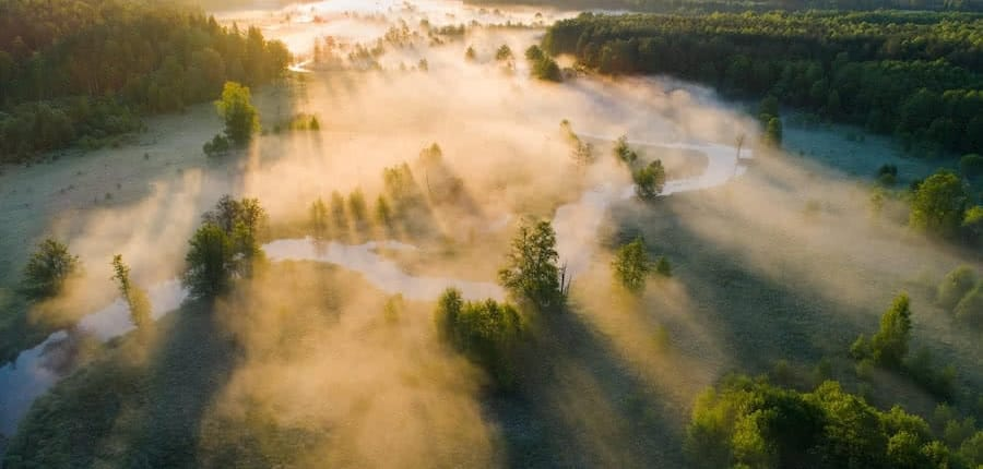 aerial view of landscape with trees and river with fog