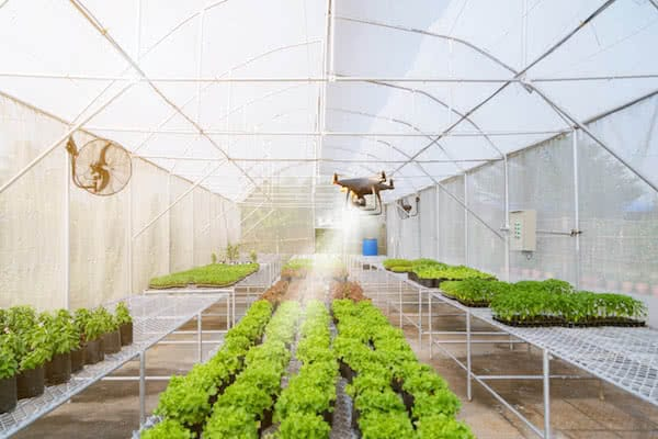 greenhouse being fumigated with industrial drone