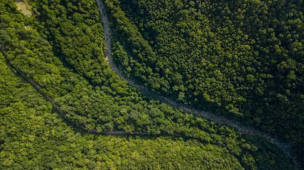 aerial viewwith industrial drone of steep terrain mapping with dense vegetation